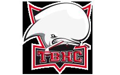 Les Dracs - Toulouse Blagnac Hockey Club Loisir